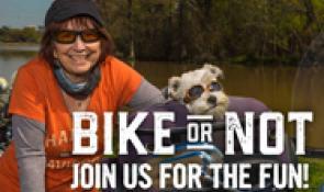 Bikers on the Bayou