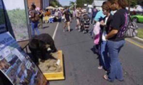 Harvest Moon Festival on the Cajun Coast