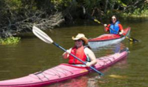 Paddling on the Cajun Coast
