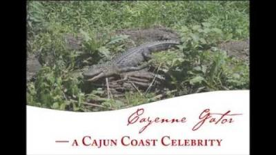 Embedded thumbnail for Cayenne Gator Builds a Nest